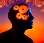 [Vidéo] Mémoire et le travail du cerveau